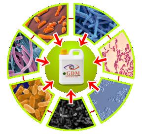 icon-circle-bacteri